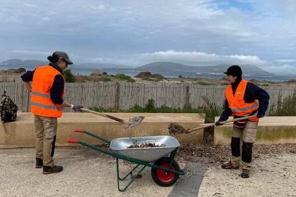 Alghero, i cittadini attivi puliscono le spiagge urbane