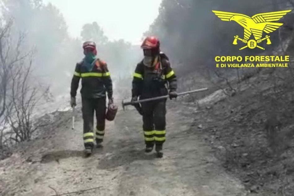 Incendi, altra giornata di fuoco in Sardegna