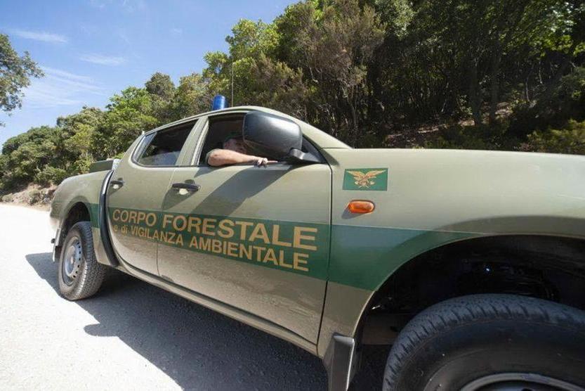 Il Corpo Forestale cerca 78 nuovi agenti, al via il concorso