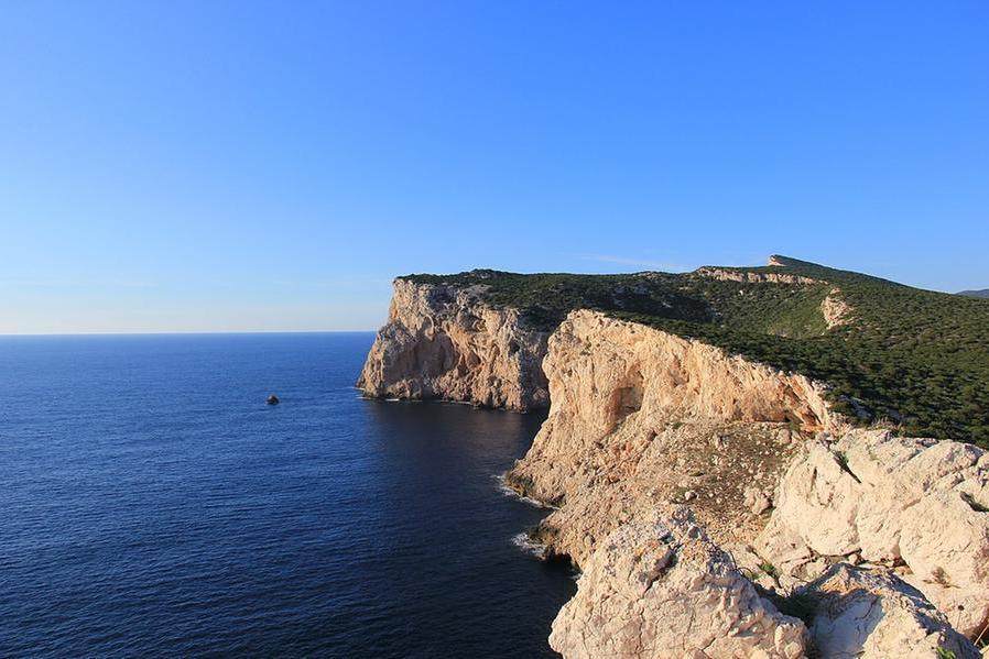L'Area marina protetta di Capo Caccia-Isola Piana si conferma di importanza mediterranea