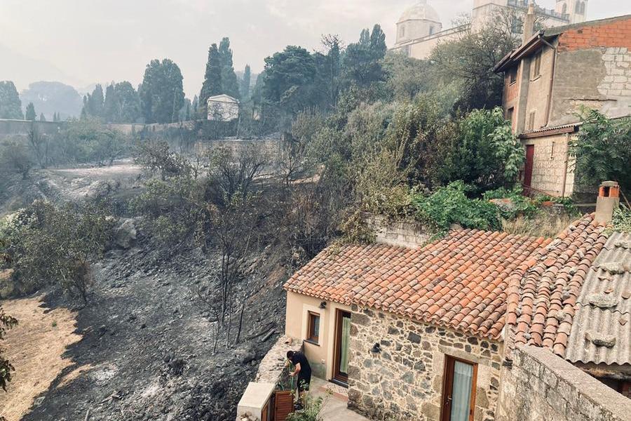 La devastazione a Cuglieri, zona Sa Pala Fritta (foto inviata dalla nostra lettrice tiziaka/instagram)