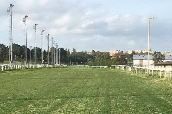 """Ippica, anche Sassari pronta alla """"manifestazione statica"""" per la ripresa delle corse"""