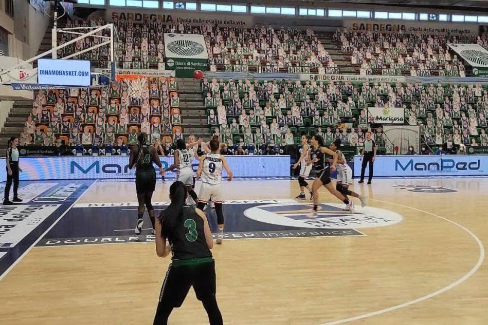 Doppio impegno casalingo per le ragazze della Dinamo: Campobasso e Geas
