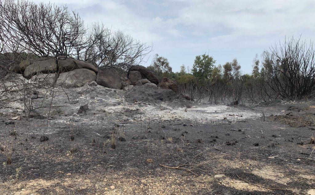 I danni del rogo (foto L'Unione Sarda - Falchetto)