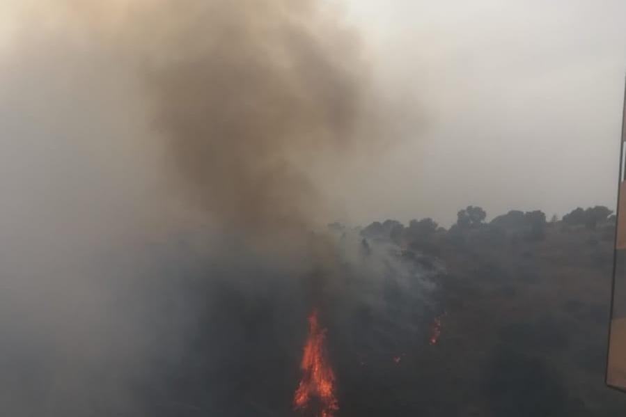 Gli incendiarinella Pineta di Sinnai, il disastro del 1997 ha insegnato poco