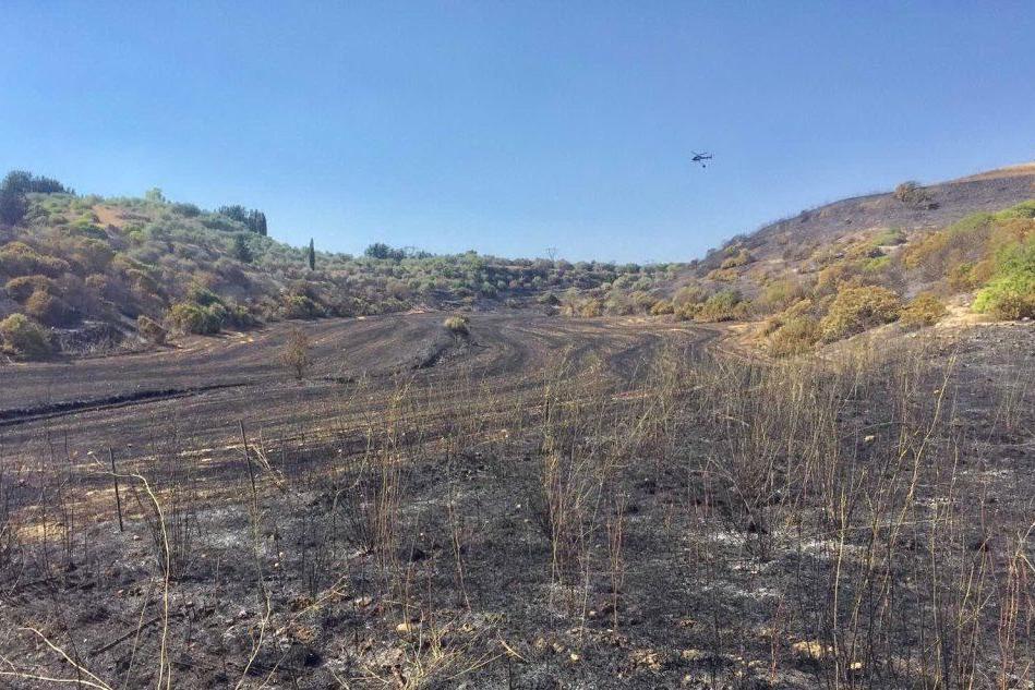 Incendio alle pendici del Monte Arci, in cenere 10 ettari di territorio