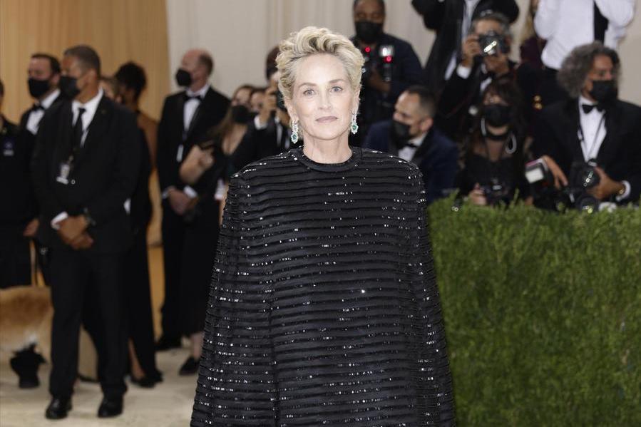 """Sharon Stone, donati gli organi del nipotino River: """"Ha salvato la vita a tre persone"""""""