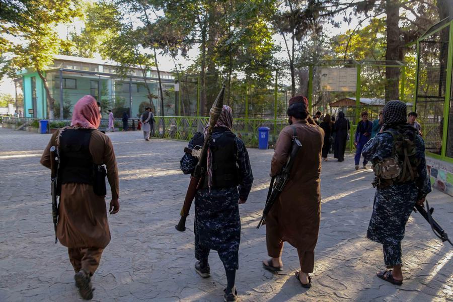I talebani chiedono di parlare all'Assemblea dell'Onu