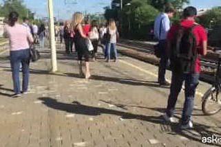 Guasto sulla linea ferroviaria Varese-Milano: passeggeri a piedi sui binari