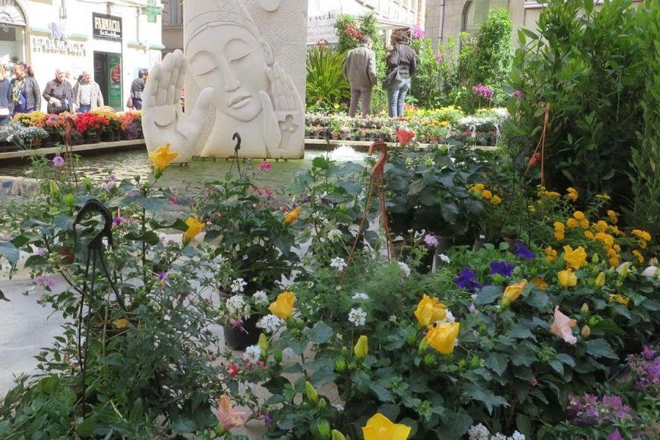 """Sassari, la rassegna """"Il centro in fiore"""": da venerdì colori e profumi nelle vie"""