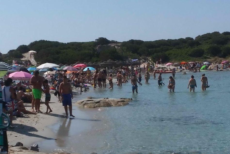 Folla a Punta Molentis (foto di Antonio Deiana)