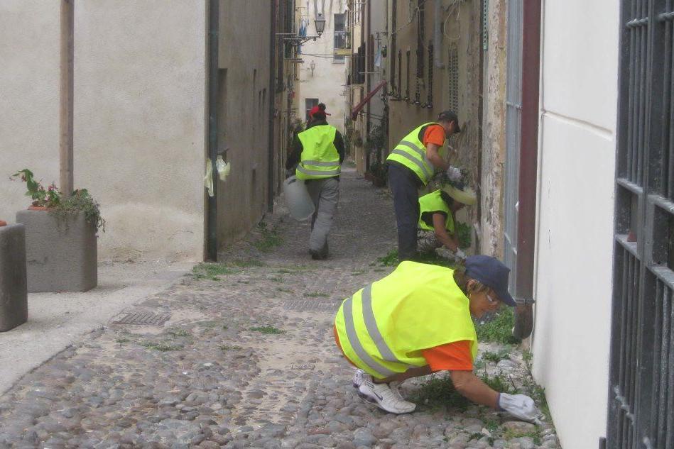 Alghero: il Comune cerca cittadini pronti a rimboccarsi le maniche