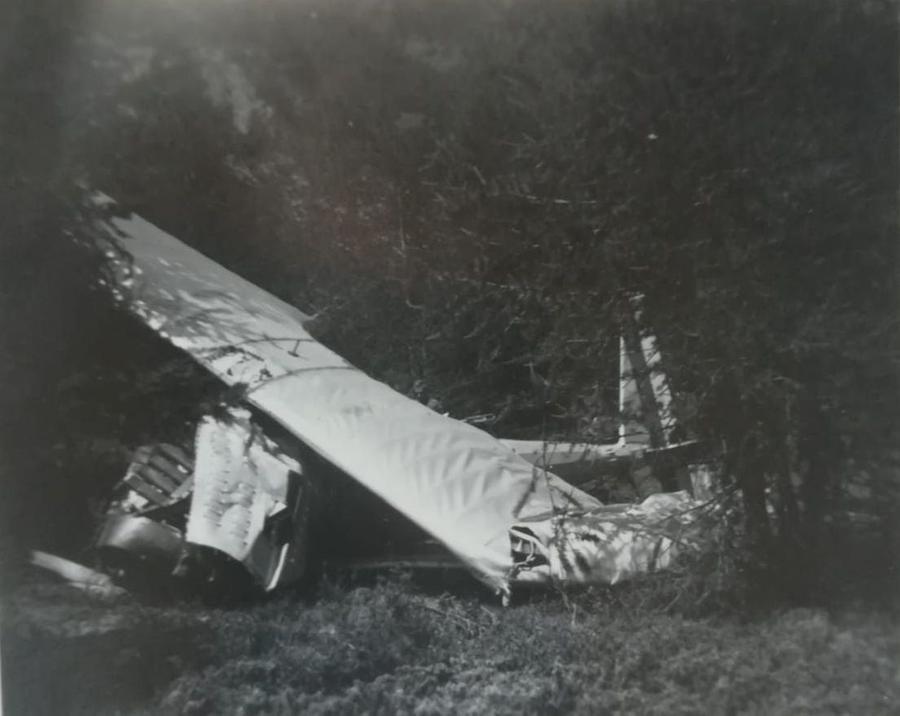 L'aereo dopo lo schianto\u00A0(foto concessa da PierCarlo Porporato)