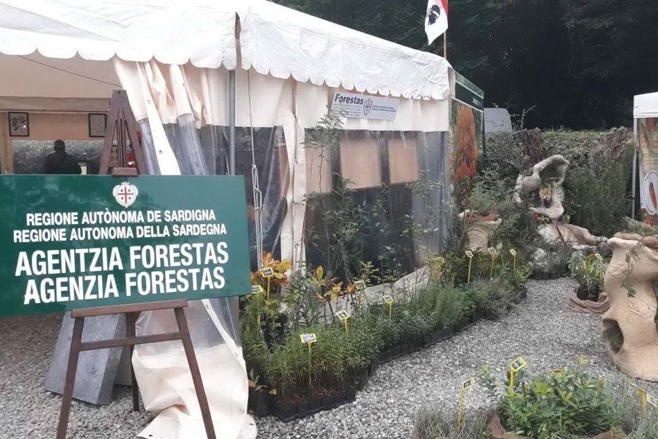 La Sardegna alla Biennale di Venezia con Forestas