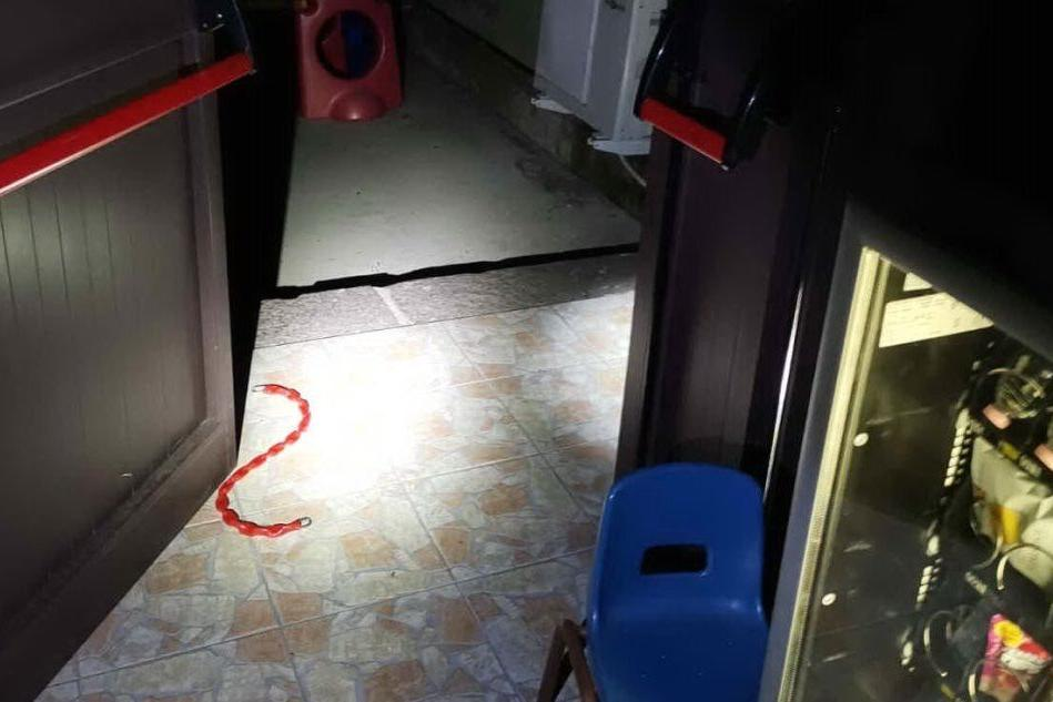 Carbonia, ladro all'asilo in cerca di bottino: messo in fuga
