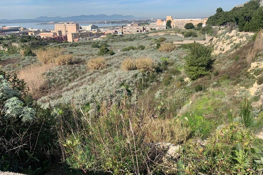 Tuvixeddu, ovvero un caso di urbanizzazione fallita