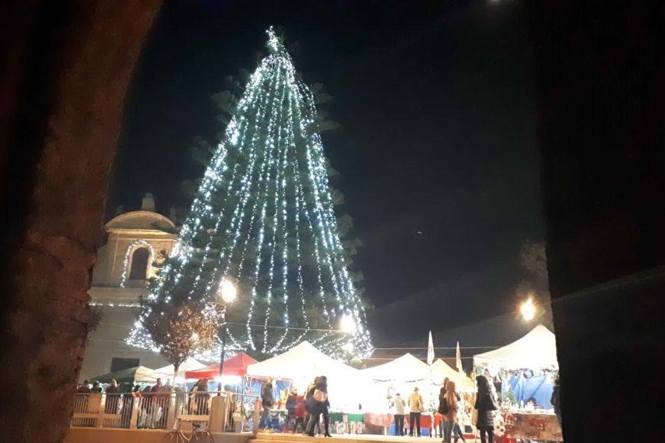 Terralba, un abete da 30 metri illumina il Natale