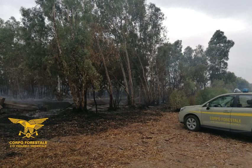 Serramanna, arrestato un agricoltore: stava appiccando il fuoco a un bosco