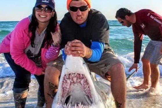 Tre ore di selfie con la carcassa dello squalo: l'agghiacciante show in Florida