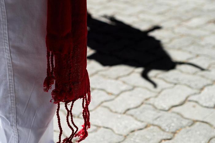 """Non solo cinghiali, per strada spunta anche un toro. Ironia web: """"Roma come Pamplona"""""""
