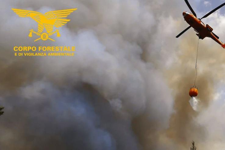 Fiammea Suni: in fumo 80 ettari di bosco e macchia mediterranea