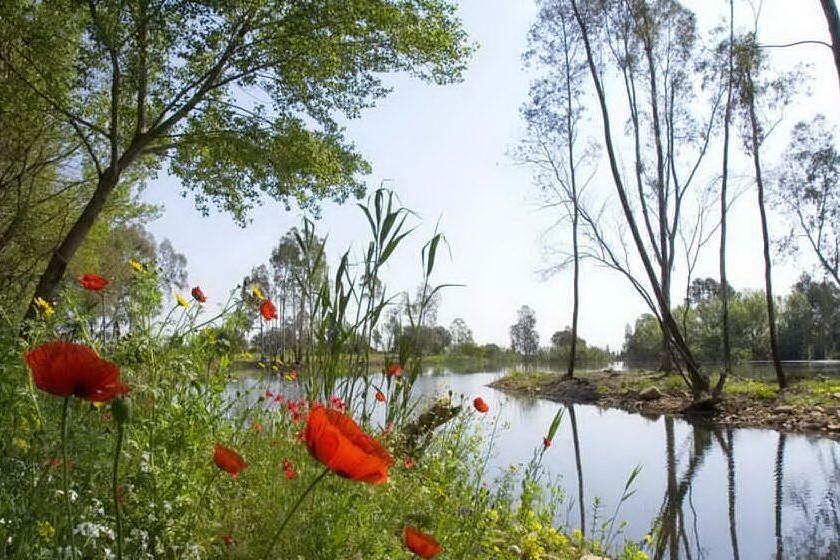 Capoterra, via alla realizzazione del parco dell'acqua di Poggio dei Pini