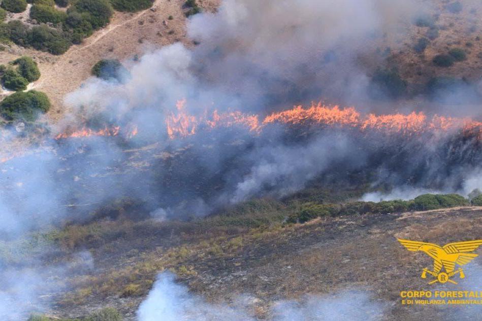 L'incendio di San Basilio (foto Corpo forestale Sardegna)