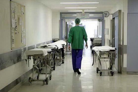 """Topo morto sul pranzo in ospedale, gli inquirenti: """"Forse un'azione dei no vax"""""""