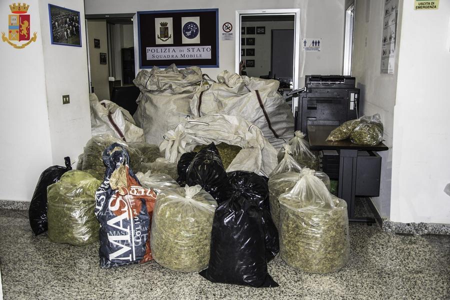 Maxi operazione antidroga a Marrubiu: un arresto. Sequestrati 160 chili di marijuana