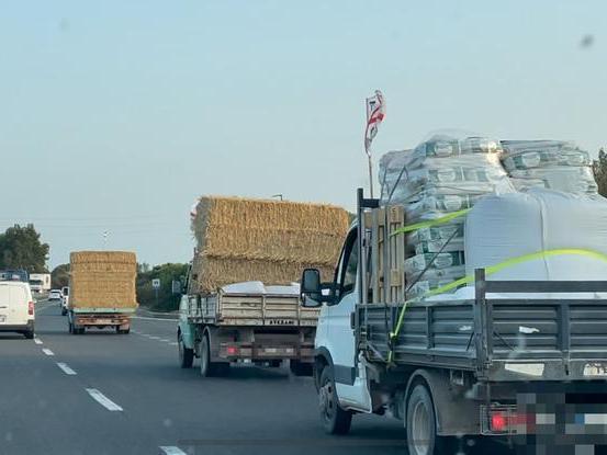 Roghi, gara di solidarietà: colonne di camion pieni di foraggio per gli allevatori dell'Oristanese