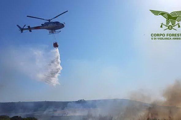 Piromani nel Cagliaritano, arrestato operatore antincendio di Forestas
