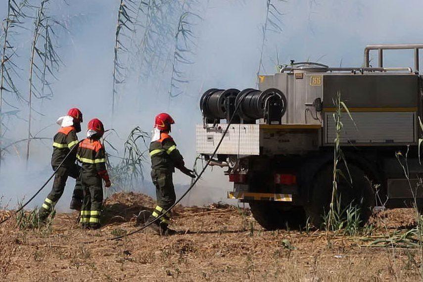 Le squadre anti-incendio della Forestale (Foto Corpo Forestale)