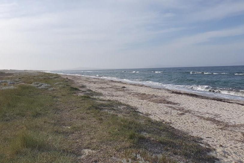 Un tratto della spiaggia di Fiume Santo (L'Unione Sarda - Tellini)