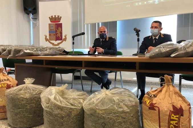 Marijuana, a Santa Giusta una piantagione da milioni di euro: cinque arresti