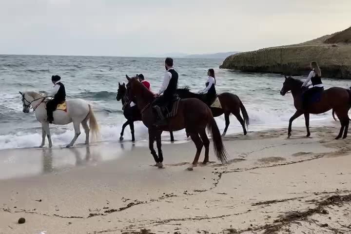 La benedizione dei cavalli e del mare nella spiaggia di Balai