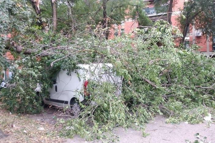 Sassari, violente raffiche di vento: tetti scoperchiati e alberi sulle auto