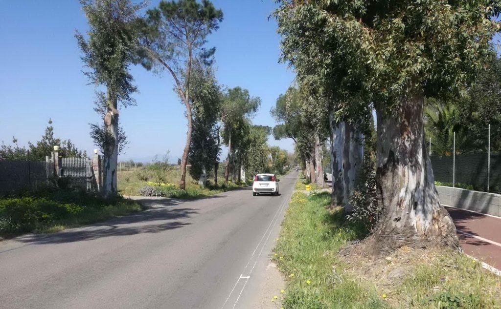 La strada in cui è avvenuto l'incidente (foto L'Unione Sarda - Ena)