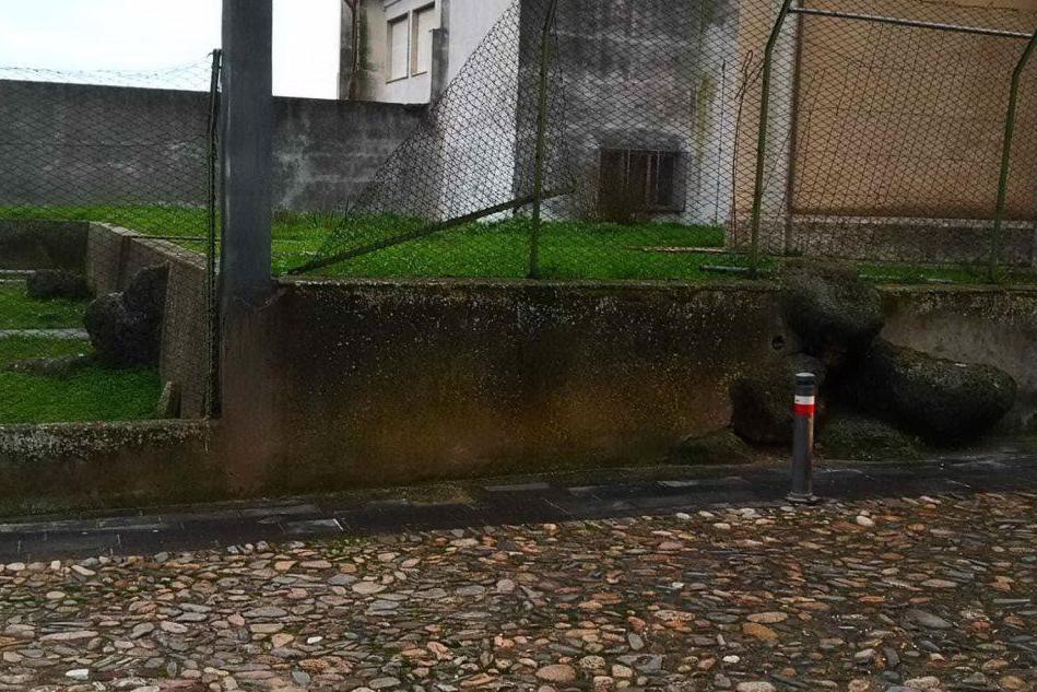 L'area dove gli archeologi scaveranno (Foto Sara Pinna)
