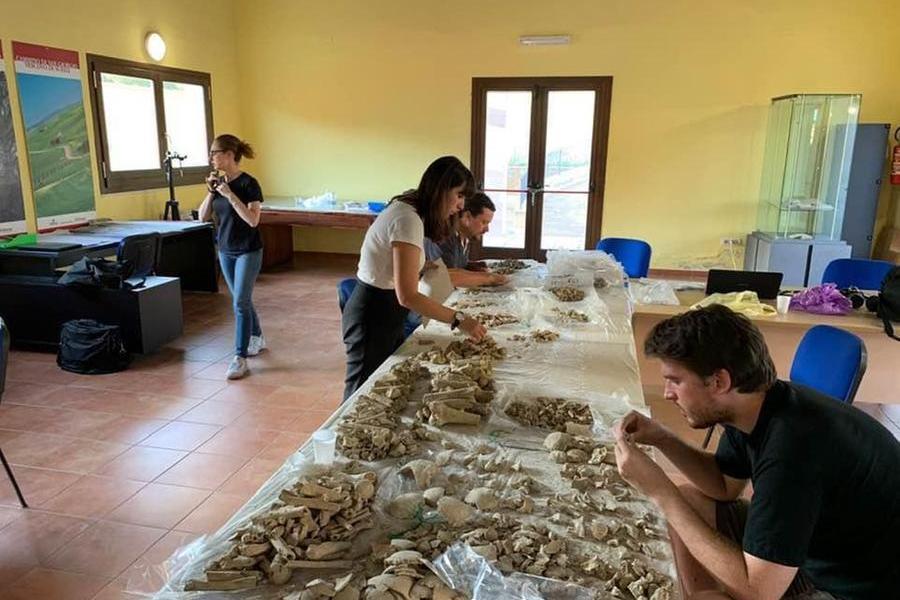 Suelli, un progetto tra antropologia e archeologia