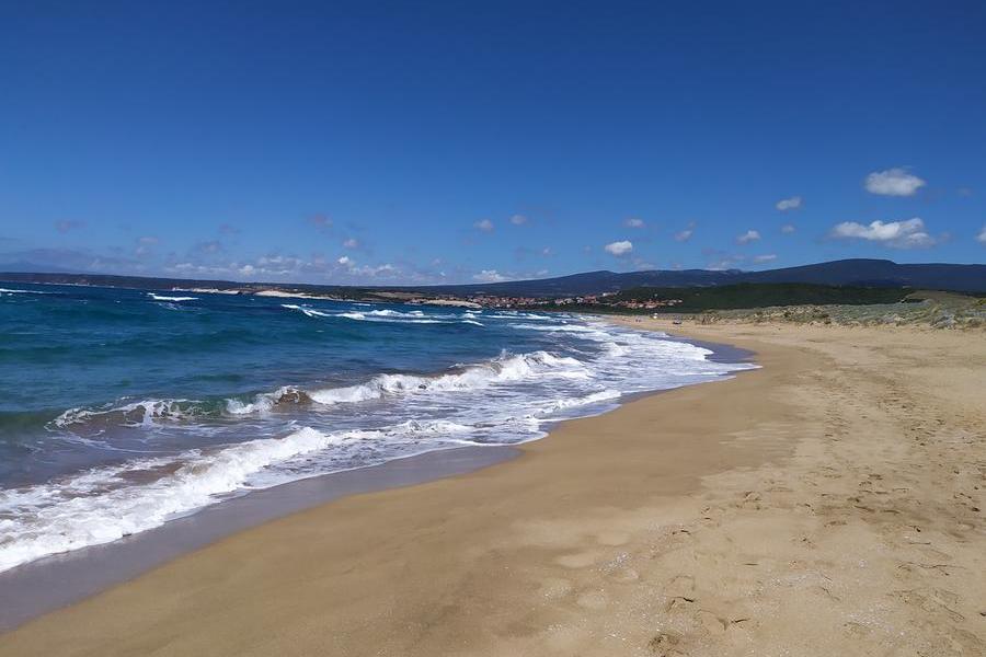 Narbolia, giornata ecologica: pulizia della spiaggia di Is Arenas