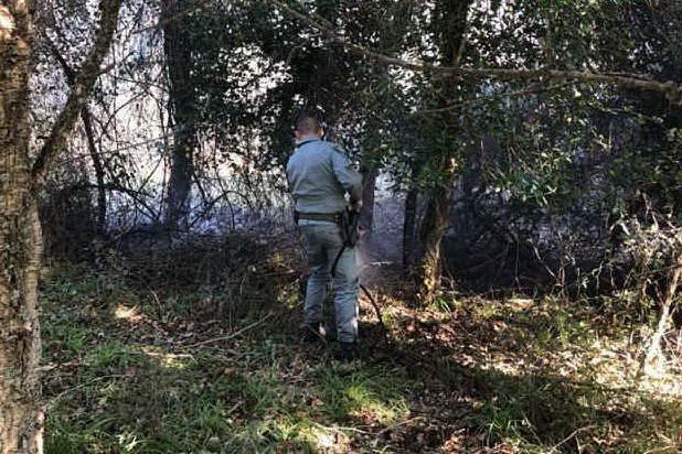 Incendio di Solanas, avviate le indagini degli agenti del nucleo investigativo della Forestale