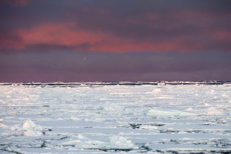 """Trump conferma: """"Voglio comprare la Groenlandia"""""""