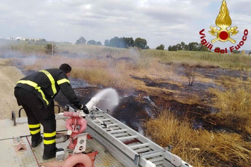 L'intervento dei vigili del fuoco a Molentargius per la bonifica