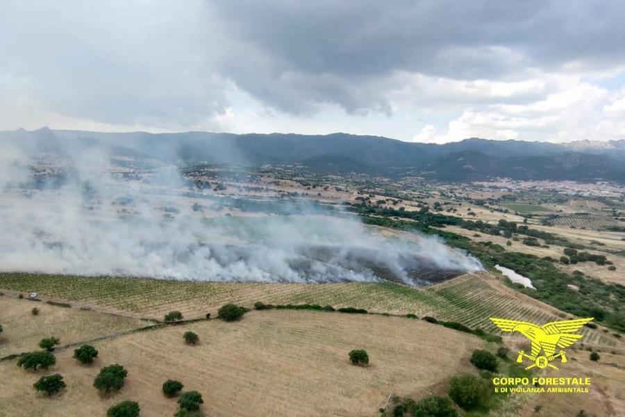 L'incendio nella zona di Oschiri (foto Corpo forestale)