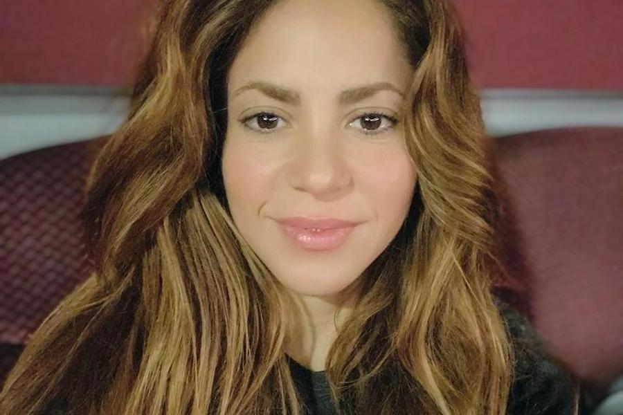 """Shakira aggredita dai cinghiali: """"Attaccata mentre passeggiavo nel parco con mio figlio"""""""