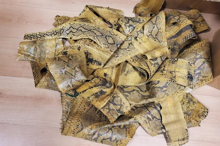 I primi vestiti? Sono stati creati almeno 120mila anni fa