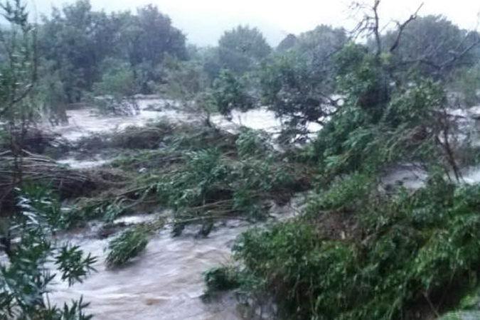 Maltempo, devastata l'oasi WWF di Monte Arcosu