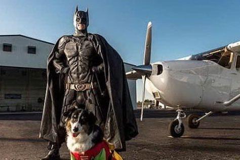 Il Batman che salva cani e gatti? Esiste davvero!