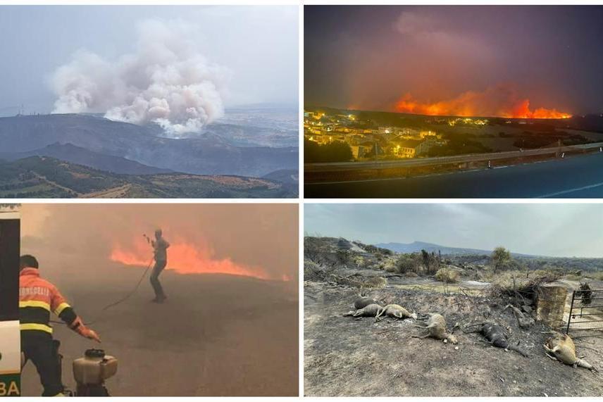 Quattro immagini delle devastazioni prodotte dai roghi (Credit: L'Unione Sarda, Vigili del fuoco. G.L.Deidda)