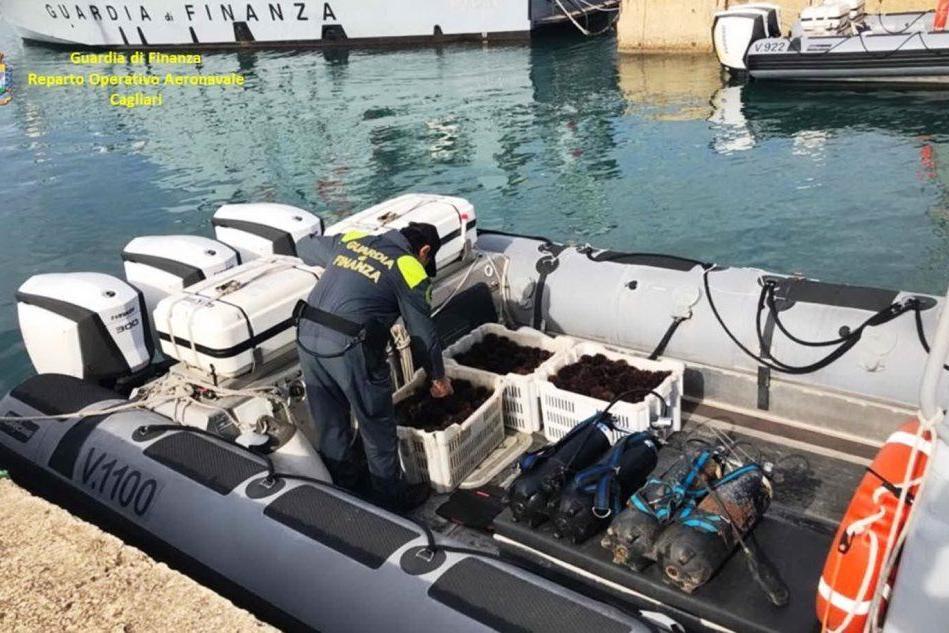 Pescano illegalmente nel Porto Canale: multa da migliaia di euro